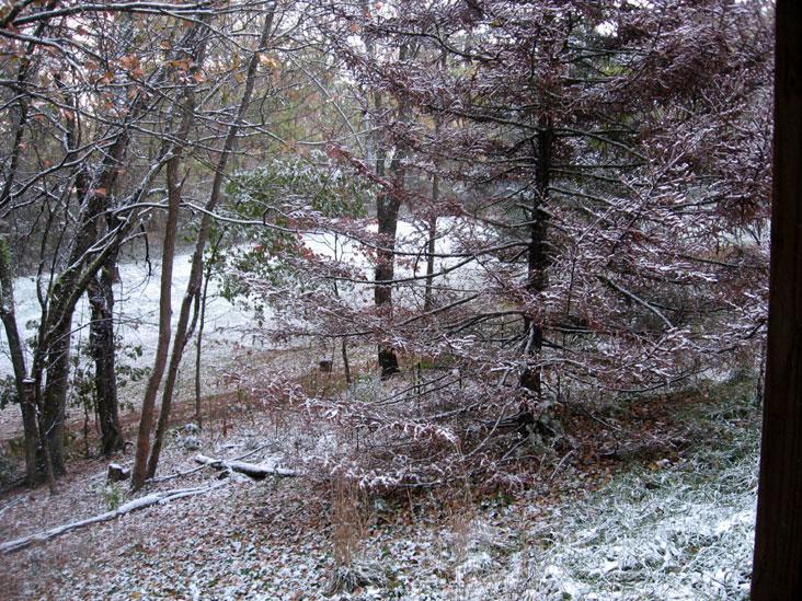 October-snow3