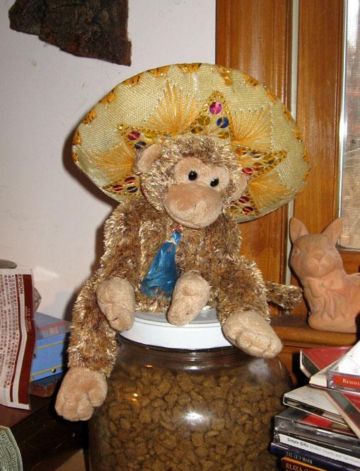 Monkey-in-sombrero