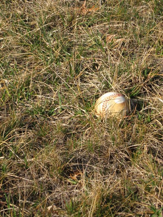 Baseball-in-grass