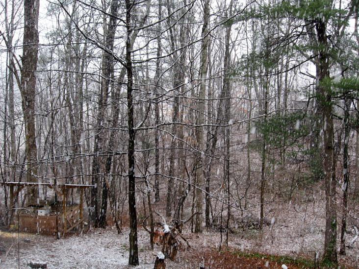 Falling-snow2