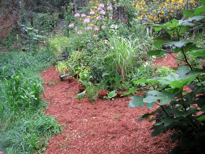 Fall-mulch