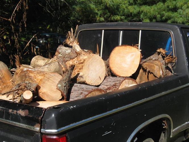 Truckload-of-wood