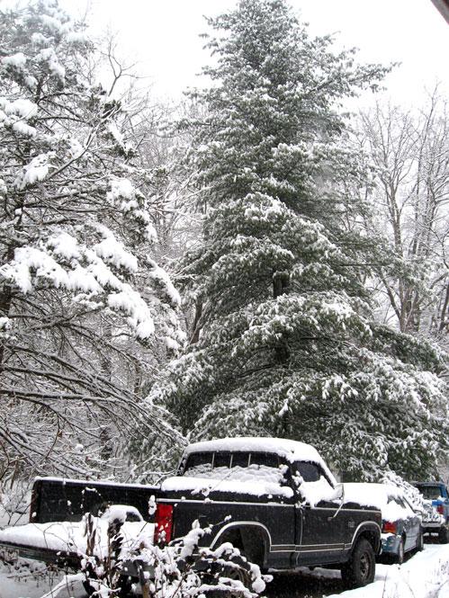 Frontyard-snow