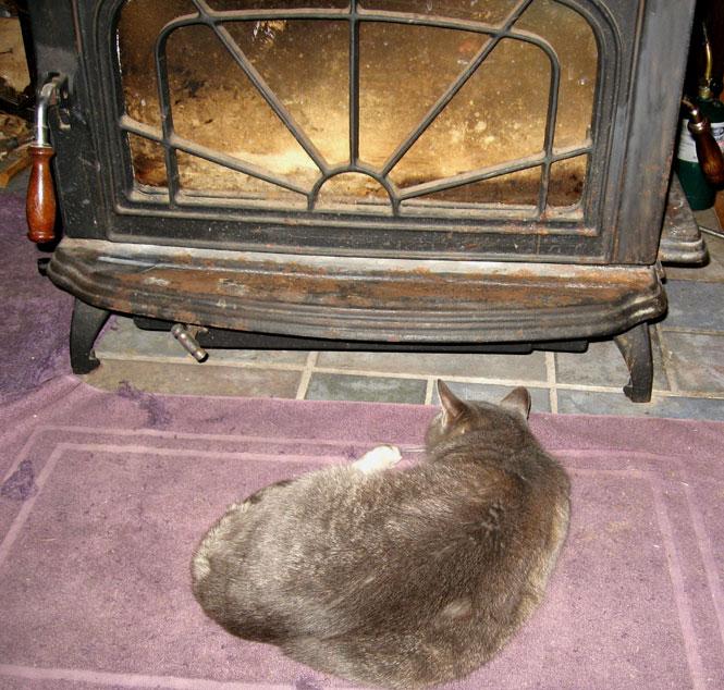 Fireside-ocie