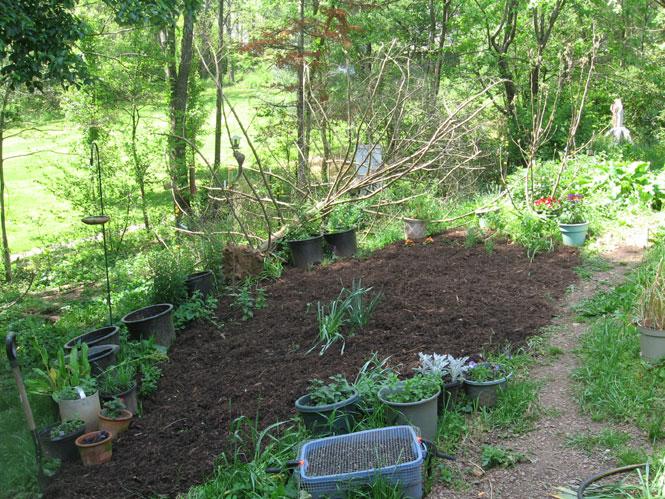 New-flowerbed