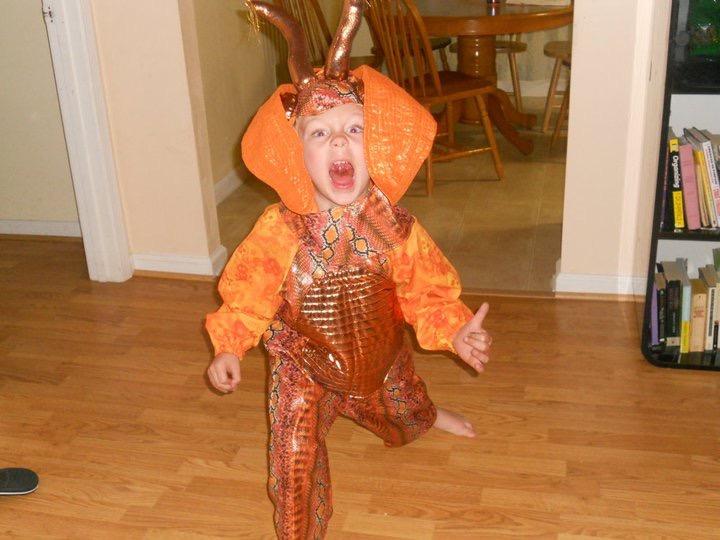 Riley dragon