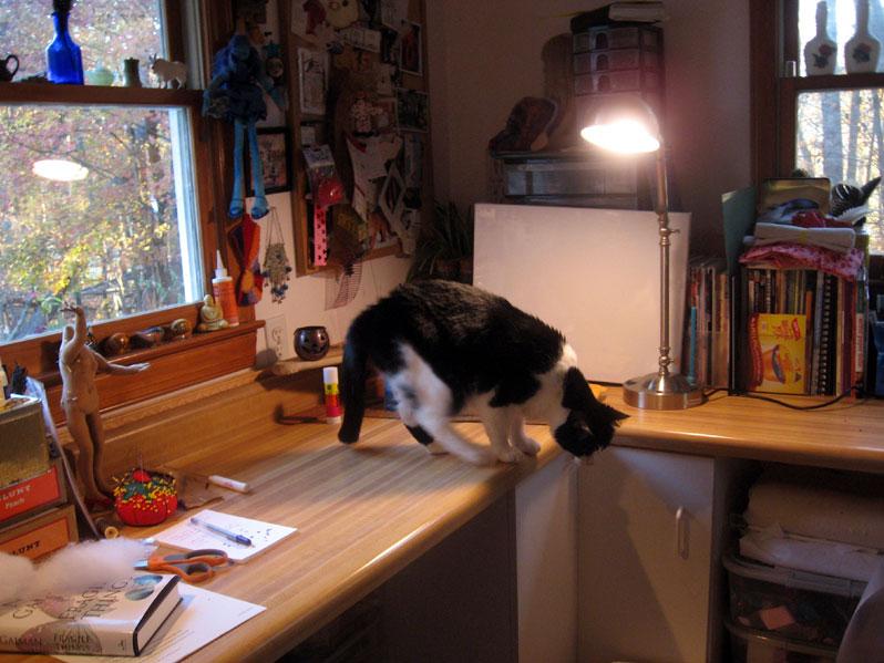 Helpfulcat2