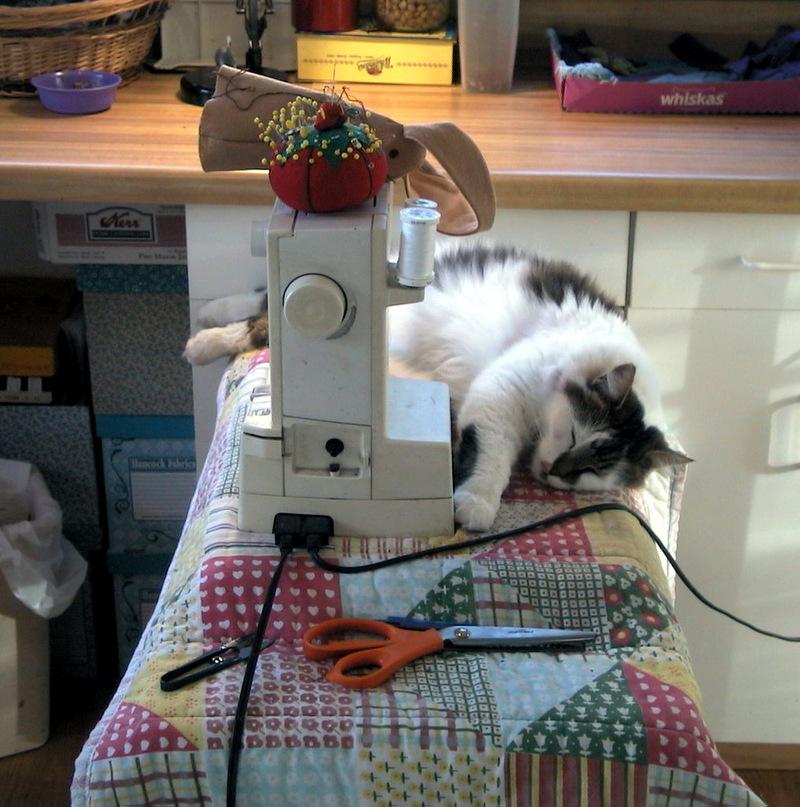 Sam_on_sewing_machine_1
