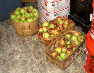 Applesinbaskets